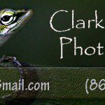 Clarke Moffitt Photography